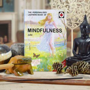 Ladybird Book Mindfulness Lifestyle