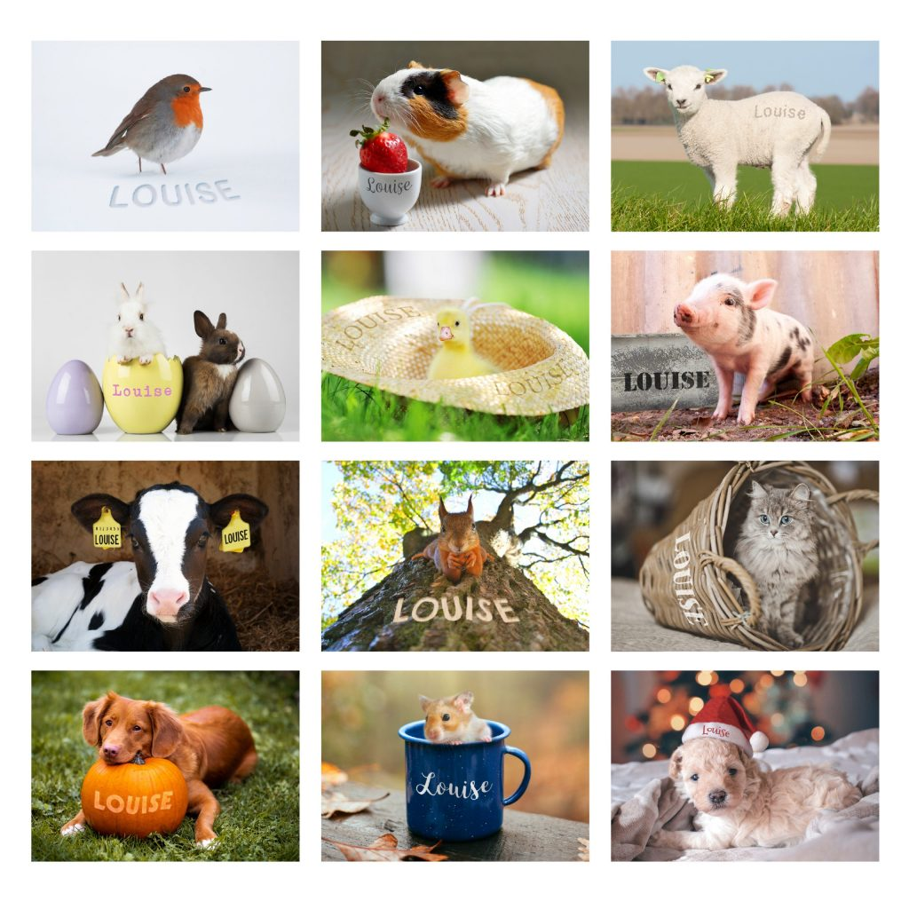 Personalised Cute Animals Desk Calendar