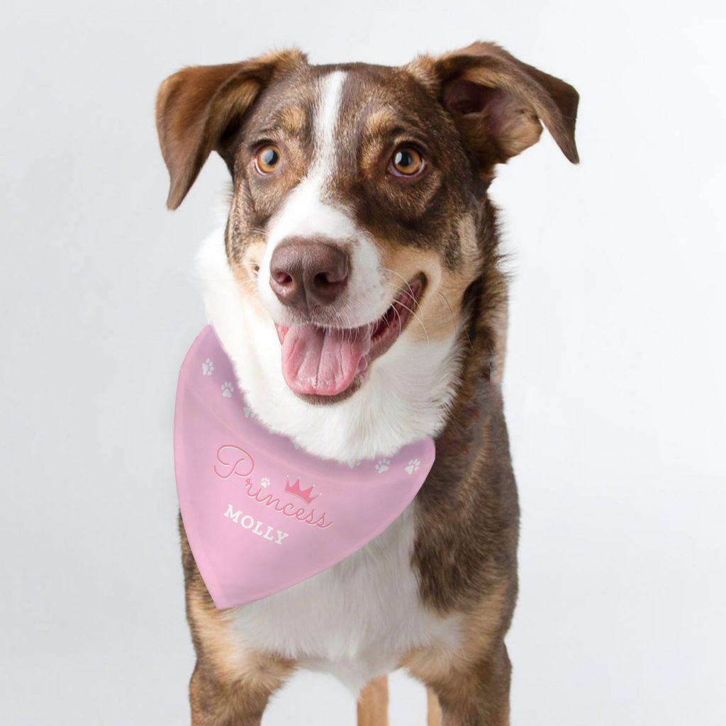 Personalised Princess Dog Bandana